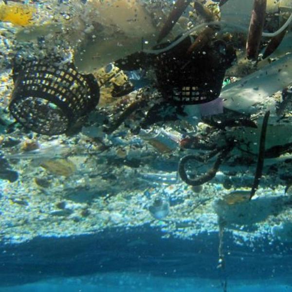 Пластик,экология,фауна, 99% пластика, попадающего в океан, бесследно исчезает