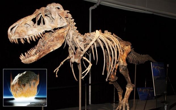 Динозавры вымерли вследствие бунта природы и удара астероида
