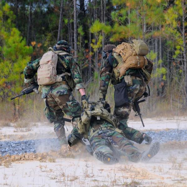 Армия, медицина, Австралийские ученые научат американский спецназ впадать в анабиоз