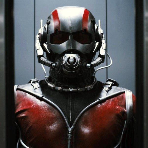 США, кинематограф, кино, Что нужно знать о «Человеке-муравье», отправляясь на премьеру?